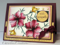 2008/12/29/Floral_Arrangement_CO_1208_1229x931_by_ChristineCreations.png