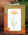 2009/10/04/WCMD09Ecook22_by_Cook22.png