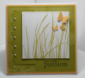 2009/02/21/LiveWithPassionFS107ByDawnEaston_by_TreasureOiler.png