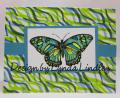 2014/03/28/butterfly_and_washi_card_by_arlsmom.jpg
