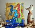 2013/06/27/Seahorse_Card_l_by_Beverly_T_.JPG