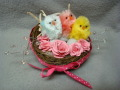 2013/04/04/nested_chicks_003_by_swandog-4.JPG