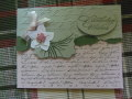 2013/07/31/scripted_birthday_by_monkswife.jpg