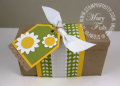 2011/04/07/Stampin_up_stampin_pretty_big_shot_box_die_by_Petal_Pusher.png