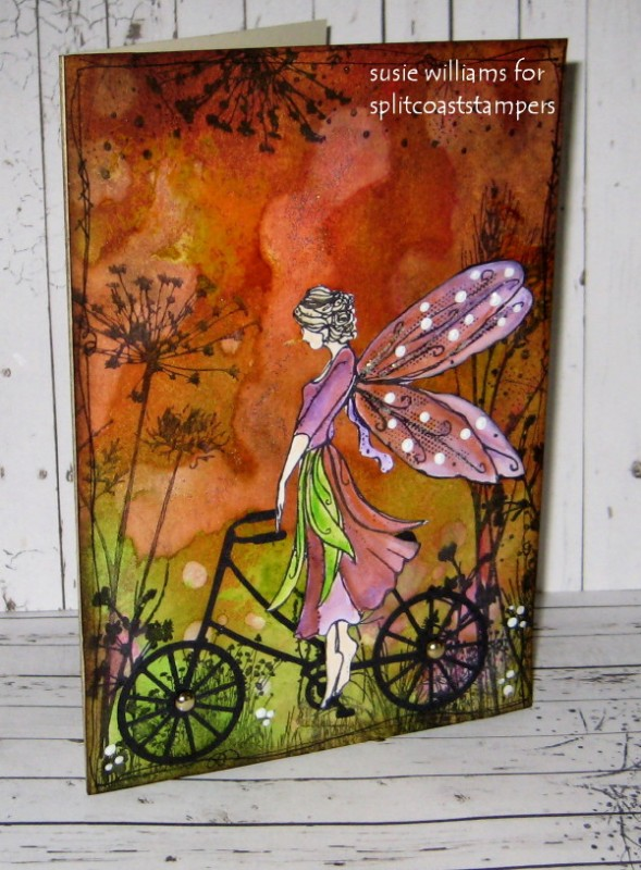 F4a289 Fairy Birthday Wishes By Susie Australia At
