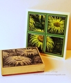 2014/07/22/Garden-Tile-Card-Photo_by_Diane_Long.jpg