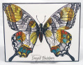 2013/05/02/Swallowtail_007_Front_by_nyingrid.jpg