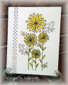 2013/06/10/Lemonade_Daisies_by_jodylb.jpg