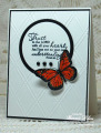 2013/07/04/Best_of_Butterflies_QFTD171_by_bon2stamp.jpg