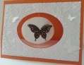 2013/07/27/butterfly_spinning_card_by_schelly21.jpg
