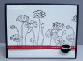 2013/05/31/Pleasant_Poppies_008_by_Bluemoon.JPG
