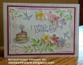2017/06/13/pastel_birthday_for_blog_by_stampwithdiane.jpg