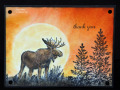 2013/08/11/Moose_Sunset_by_3boymom.jpg
