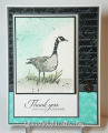 2013/06/27/Wetlands_001s_by_Cards4Ever.jpg
