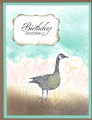 2013/07/15/Wetlands_Birthday_Card_by_SharonKstampsalot.jpg