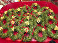 2019/12/18/Xmas_Wreaths_-_SCS_by_Pansey65.jpg