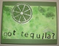 2013/08/02/Tequila2013_by_Lisa_K_Musil.jpg