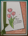 2016/03/21/sweet_tulips_1_by_Forest_Ranger.png