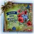 2015/06/17/Bloom_Where_You_re_Planted_Canvas_by_Tracey_Fehr.JPG