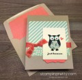 2016/04/11/Stampin-Up-Owl-Builder-Punch-Just-Because-Card-Envelope-Liner-By-Mary-Fish-StampinUp-500x494_by_Petal_Pusher.jpg
