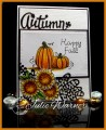 2015/09/05/Fall_Pumpkins_07258_by_justwritedesigns.jpg