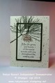 2014/11/12/Card_20243_20Ornamental_20Pines_202_20Layer_20Stamping_20tall_by_Robyn_Rasset.jpg