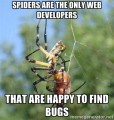 2016/05/20/spiders_are_the_only_web_developers_by_Ibrands.jpg