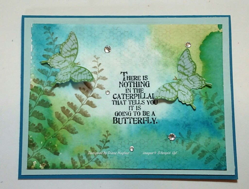 DH Pacific sky wasabi butterflies by diane617 - Cards and
