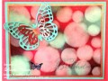 2015/08/28/Bokeh_Butterfly_Birthday_Card_Butterfly_Basics_with_wm_by_lnelson74.jpg