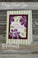 2016/03/10/stampinup_crazyaboutyou_birthdaycard_nicepeoplestamp_7_47_39_PM_by_AllisonStamps_.jpg