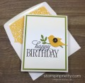 2016/03/28/Stampin-Up-Happy-Birthday-Everyone-Card-Envelope-By-Mary-Fish-StampinUp-500x490_by_Petal_Pusher.jpg