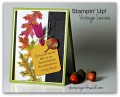 2015/10/20/Stampin_Up_Vintage_Leaves_Mojo_by_SandiMac.jpg