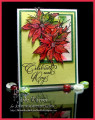 2017/10/21/Poinsettia_Frame_scs_09961_by_justwritedesigns.jpg