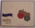 2015/12/20/Thankful_Acorns_8-22-15_by_uvgotcarla.png