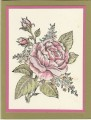 2015/10/30/HYCCT1525_Stipple_Rose_by_Kathy_LeDonne.jpg