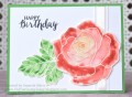 2017/04/17/Spring_Birthday_Rose_by_mandypandy.JPG