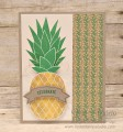 2016/07/11/Week_123_Pineapple_by_lisacurcio2001.jpg