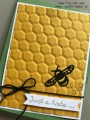 2017/04/21/Hexagons_-_Stamp_It_Up_With_Jaimie_-_Stampin_Up_by_StampinJaimie5.jpg