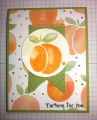2016/07/19/peach-card_by_monsyd2.png