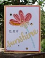 2016/06/16/Sunshine_Sayings_Sunshine_Wishes_My_Tanglewood_Cottage_by_Stampin_Scrapper.jpg