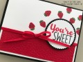 2017/03/17/Cool_Treats_-_Stamp_It_Up_With_Jaimie_-_Stampin_Up_by_StampinJaimie5.jpg