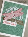 2017/04/06/Dragonfly_Dreams_-_Stamp_It_Up_With_Jaimie_-_Stampin_Up_by_StampinJaimie5.jpg