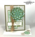 2017/02/09/Succulent_Garden_Mother_s_Day_6_-_Stamps-N-Lingers_by_Stamps-n-lingers.jpg