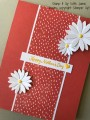 2017/04/24/Daisies_-_Stamp_It_Up_With_Jaimie_-_Stampin_Up_by_StampinJaimie5.jpg