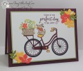 2017/05/19/Stampin_Up_Bike_Ride_-_Stamp_With_Amy_K_by_amyk3868.jpg