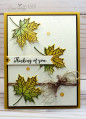 2017/09/07/Stampin_Up_Colorful_Seasons-Cardiology_by_Jari_001_by_Jari.jpg