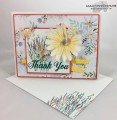 2017/04/13/Delightful_Daisy_Thank_You_-_Stamps-N-Lingers_5_by_Stamps-n-lingers.jpg