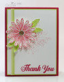 2017/08/12/Stampin_Up_Daisy_Delight-Cardiology_by_Jari_by_Jari.jpg
