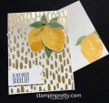 2017/07/20/Stampin-Up-Bundle-of-Love-DSP-Lemon-Zest-Bundle-Love-cards-idea-Mary-Fish-Stampinup-SU-500x474_by_Petal_Pusher.jpg