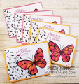 2018/04/16/petal_passion_memories_and_more_card_pack_ideas_beautiful_you_flower_butterfly_painted_with_love_pattystamps_stampin_up_5_by_PattyBennett.jpg